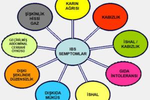 IBSyeni11